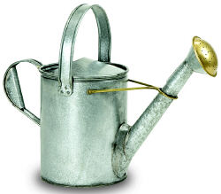 Achla WC11 Galvanized Short Necked Watering Can