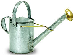 Achla WC12 Galvanized Long Necked Watering Can